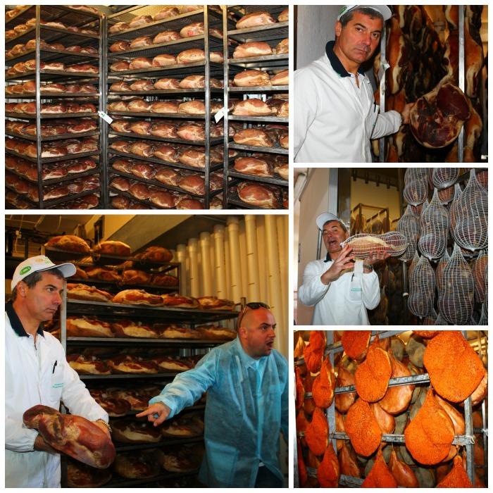 Ham Factory Collage 2